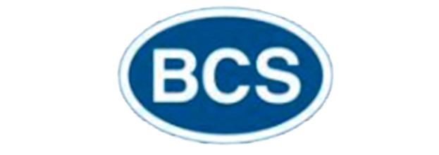BCS 1.0